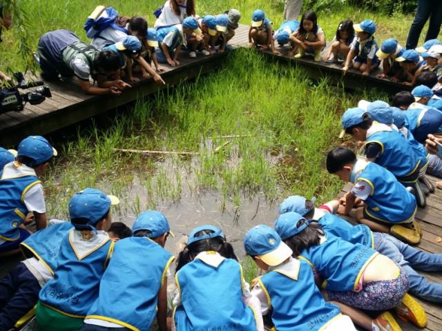 맹꽁이 놀이터는 인근 학생들의 생태학습장으로 인기가 높다.ⓒ전북환경운동연합