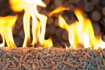 wood-pellet-coal