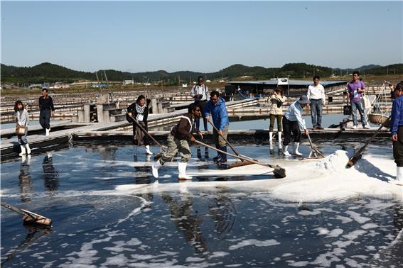 신안군 증도의 염전 체험. 유네스코 생물권보전지역으로 지정된 증도는 전통방식으로 소금을 생산하고 있다(2012년 East Asian Biosphere Reserve Network 회의에서) ⓒ홍선기