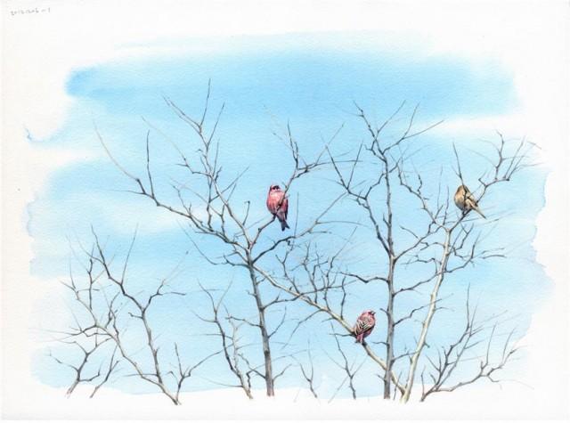 새를 기다리는 사람