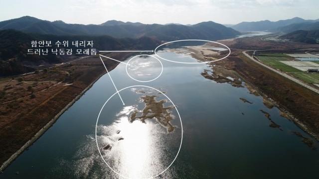 함안보의 수위를 내리자 함안보 상류의 하상이 드러나며 거대한 모래톱이 보인다. ⓒ 대구환경운동연합 정수근