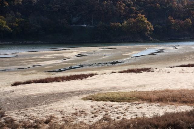 낙동강 황강 합수부 쌓인 거대한 모래톱. 강폭이 거의 모래톱으로 뒤덮였다. 준설한 것이 무로 변한 현장이다. ⓒ 대구환경운동연합 정수근
