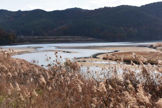 이전 모습으로 모래가 복원된 황강 합수부. 이것이 살아있는 강의 모습이다ⓒ 대구환경운동연합 정수근