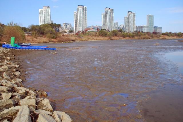 한국수자원공사가 선착장으로 사용하던 장소도 온통 펄밭이다.ⓒ 김종술