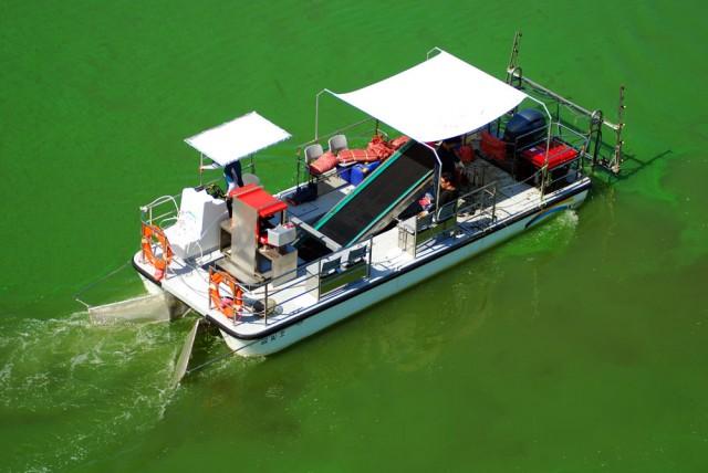 지난해 한국수자원공사가 금강에 창궐한 녹조를 제거하기 위해 녹조제거선을 운행 중이다.ⓒ김종술 기자