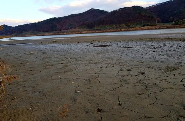 충남 공주시 우성면 어천리 인근 물 밖으로 드러난 퇴적토는 시커먼 펄밭이다.ⓒ 김종술