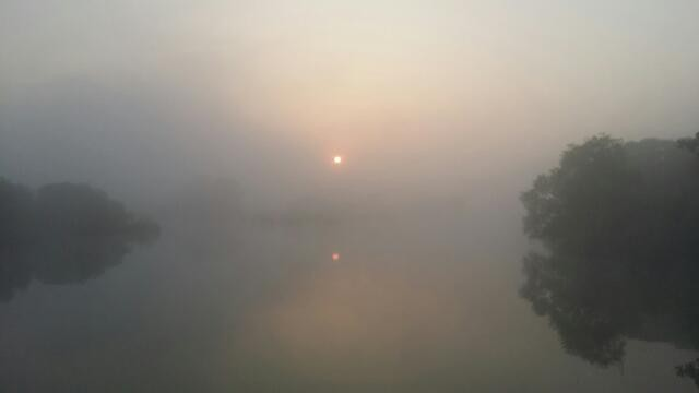 화포천의 새벽 ⓒ김해양산환경운동연합 강을규