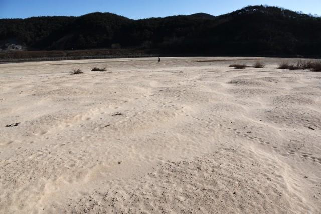 돌아온 모래톱은 강 반대편까지 길게 뻗어있다. ⓒ 대구환경연합 정수근