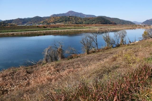 합천보 수문을 열기 전 낙동강 강물이 역류해 회천의 모래톱을 완전히 뒤덮은 모습 ⓒ 대구환경연합 정수근