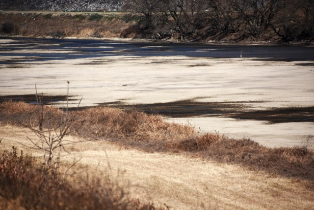 강물이 빠지자 되돌아온 회천의 모래톱이 4대강사업 이전의 모습에 가깝게 되돌아왔다. ⓒ 대구환경연합 정수근