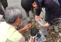 [보도자료] 한강 신곡수중보 저질토 퍼올리니… 끈적한 유기물 집합소