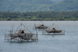 [홍선기의 섬이야기] 인도네시아 전통어업 '바칸(Bagan)'