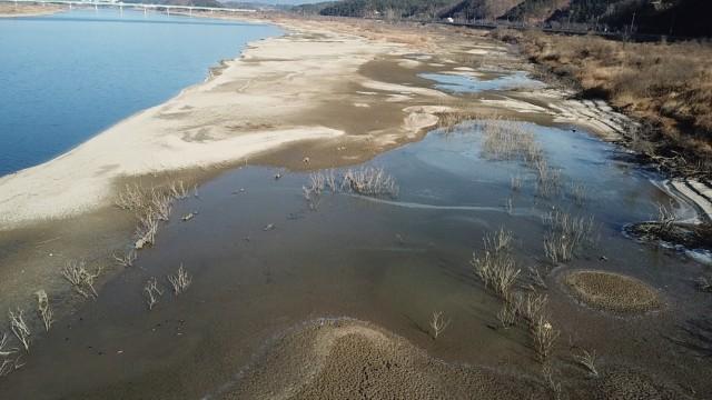 우곡교 하류에 드러난 넓은 모래톱과 습지. 반가운 변화가 찾아왔다. ⓒ 대구환경연합 정수근
