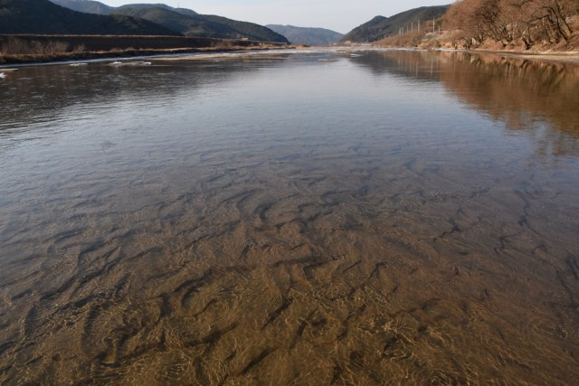 모래톱이 훤히 비치며 맑은 강이 흐르고 있다. 이곳은 낙동강의 지천인 회천이다. ⓒ 대구환경운동연합 정수근