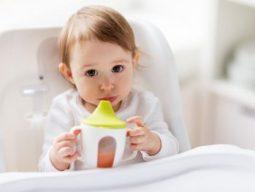 [생활환경] 환경호르몬 BPA 노출을 줄이기 위한 5가지 생활습관