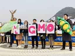 """GMO로부터 안전한 식탁을!"" GMO완전표시제 청와대 국민청원 진행"