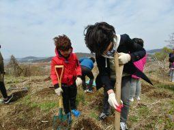 한강숲조성 및 자연체험 _ 노을공원에서 어린이들과 숲을 만들었어요