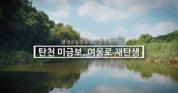 [영상] 탄천 미금보, 여울로 재탄생