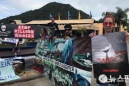 [바다위원회] 한국 대표단의 국제포경위원회(IWC) 제67차 총회 반생태적 투표를 규탄한다