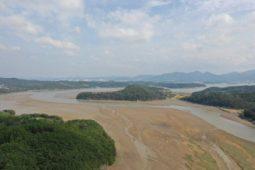 [보도자료] 멸종위기종 대추귀고둥 서식처 광포만, 습지보호구역 지정해야