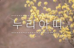 """[누리아띠 729호] """"미세먼지 대책 정부와 국회가 응답하라"""" 미세먼지 줄이기 7대 정책제안"""