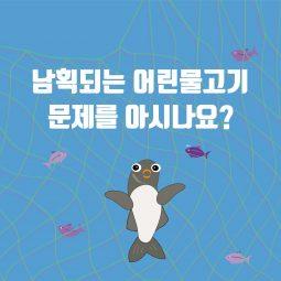 [카드뉴스] 남획되는 물고기 누가 잡힐까?