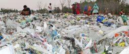 [지구의 벗] 더 이상 쓰레기 수출 안돼