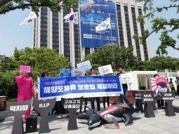 [성명서]한국 정부는 해양포유류보호법 제정하라