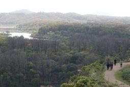 [논평] 강원, 연천 비무장지대 접경지역 유네스코 생물권 보전지역 지정을 환영하며
