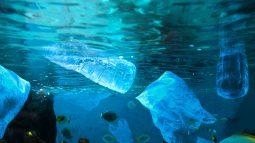 [플라스틱바다]바다로 유입되는 플라스틱, 연간 800만 톤