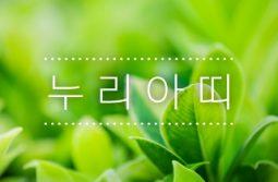 [누리아띠 745호] 국토부 김현미 장관, 도시공원일몰제 대책 지방자치단체 탓하며 정부의 무능만 드러내