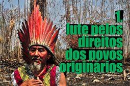 아마존을 지키기 위한 9가지 방법