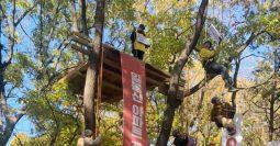 """""""일봉산 참나무 숲에서 사랑하는 천안시민들께 고합니다"""""""