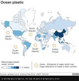 [해양보호] 플라스틱 쓰레기, 바다를 거쳐 고래와 바다거북을 통해 다시 우리 밥상으로