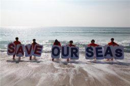[바다의날 논평]인천앞바다 대규모 간척을 중단하고, 해양수산부는 바다환경부로 거듭나라