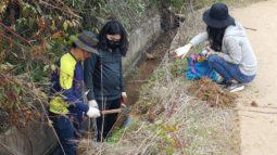 [보도자료] 강원도 고성군 송정리 농수로에 14개 개구리사다리 설치