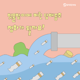 [카드뉴스] 빗물받이에 버린 담배꽁초, 정화가 될까요? 🤔
