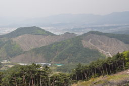 "[Press Release]KFEM held a press conference to condemn the South Korea Forest Service's ""carbon-neutral"" logging policy on Earth Day."