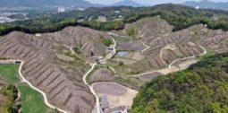 [활동기사]30살 숲 베어내려던 산림청 탄소중립 사업, 아직도 결론 내지 못한 민관협의회