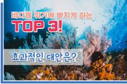 [해양보호구역] 바다를 위기에 빠지게 하는 TOP3 ☠️
