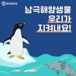 [카드뉴스] 남극해양생물 우리가 지켜내요!