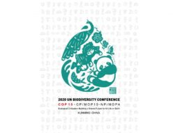 [활동기사] 생물다양성협약(CBD) 쿤밍 선언을 통해 본 해양보호