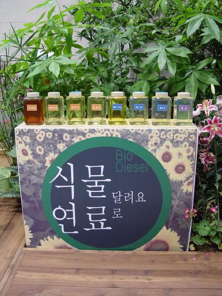 ▲ 롯데백화점 앞에 전시된 식물연료 원료병과 바이오디젤 설명보드 ⓒ 권미예