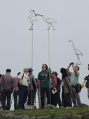 ▲ 지난 6월 3일 저어새 생태기행 참여자들은 멀리 저어새의 서식지