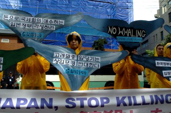 회의 개막에 앞서 일본대사관 앞에서 항의시위를 벌인 환경연합 회원들 ⓒ환경연합 박종학