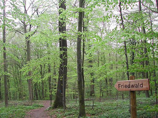▲ 독일에서는 수목장 지역(Fried-Wald)임을 알려주고 있다. 독일 슈바이 게른 지역 수목장. ⓒ 이철재
